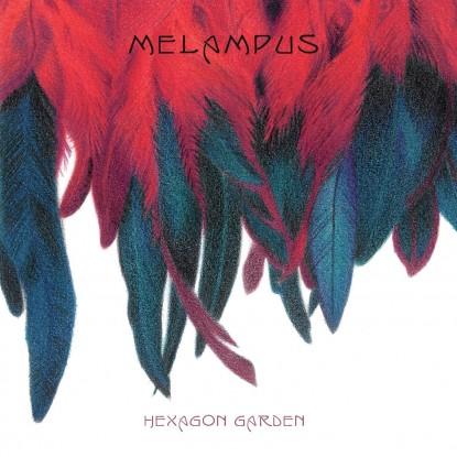 Melampus – Hexagon Garden