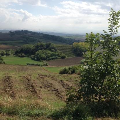 Repubblica Indipendente di Lu @ Parco Comunale, Lu Monferrato (AL)