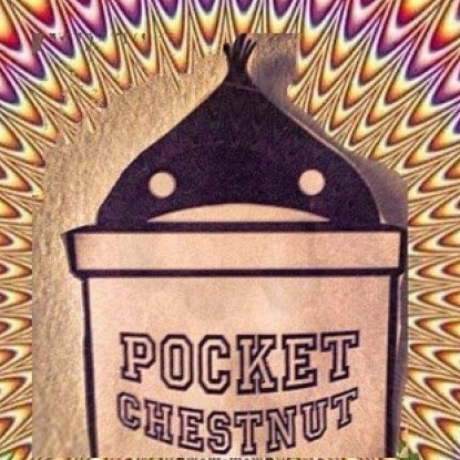 Nuovo video per i Pocket Chestnut