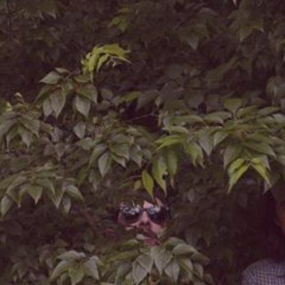 Interpretazione dei Sogni è il nuovo album de Le Sacerdotesse dell'Isola del Piacere
