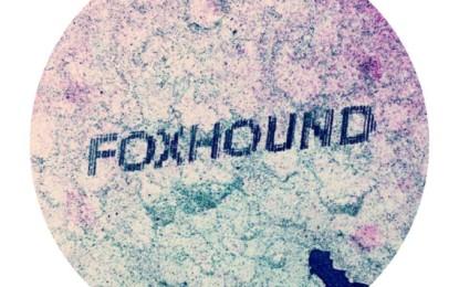 Nuovo EP per i Foxhound