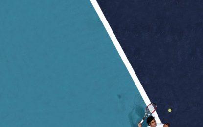 Miss Mog – Federer